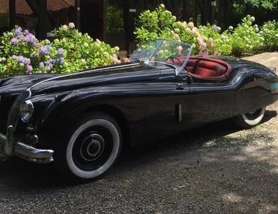 Jaguar Xk140 à Dax (Landes)
