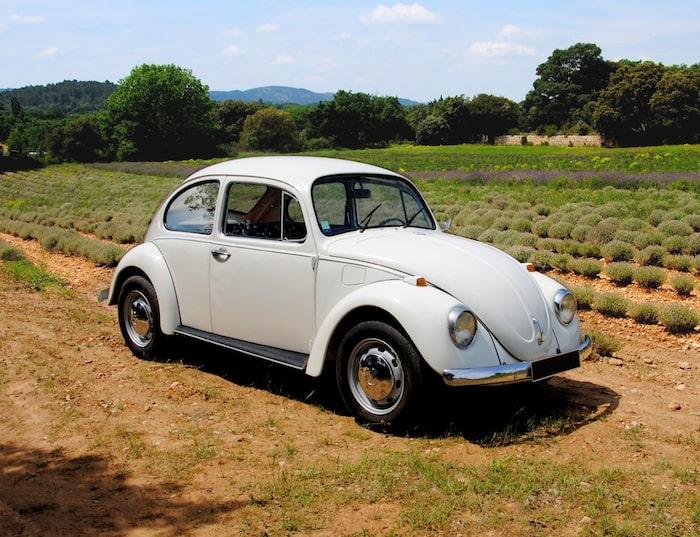 VW Beetle de 3/4 face dans un champ