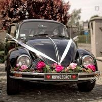 VOLKSWAGEN (VW) Coccinelle 1970 à Le Perray-en-Yvelines (254)